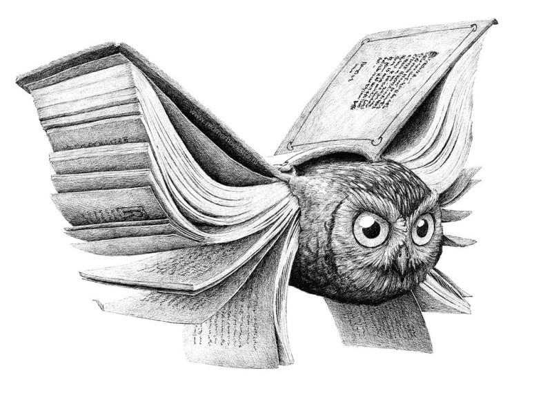 kniga-sova
